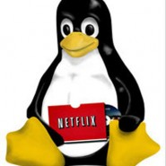 Watch Netflix on Archlinux
